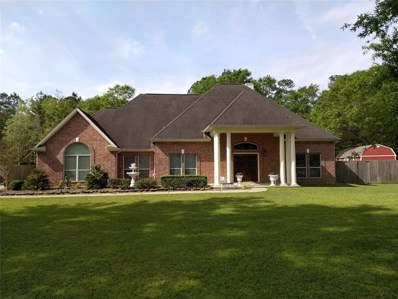 64 Private Road 6353, Dayton, TX 77535 - #: 55674095