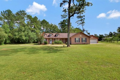 22656 Baneberry, Magnolia, TX 77355 - MLS#: 56044643