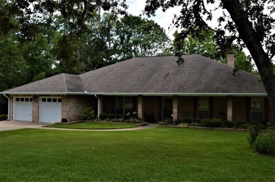 110 S Holly Glen Drive, Point Blank, TX 77364 - MLS#: 56374726