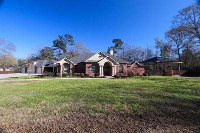 304 Magnolia Road, Woodbranch, TX 77357 - MLS#: 56674020