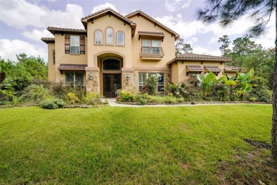 27536 Velvet Sky Way, Spring, TX 77386 - MLS#: 56916227