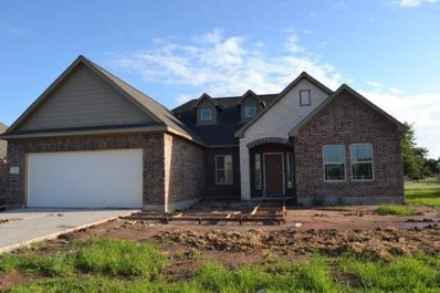 331 Twin Lakes Drive, West Columbia, TX 77486 - MLS#: 57251224