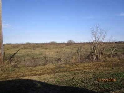 County Road 868, Brazoria, TX 77422 - MLS#: 57490491