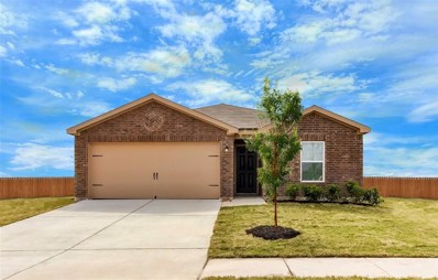 1119 Diamond Drape Drive, Iowa Colony, TX 77583 - #: 58328970