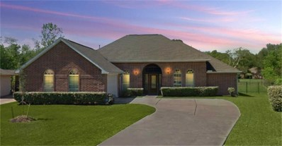3002 Cypress Point Drive, Missouri City, TX 77459 - MLS#: 58650258