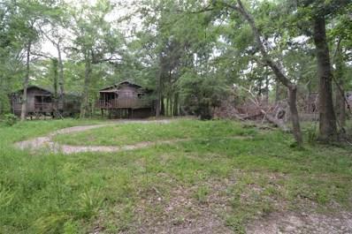 1323 Deepwood Drive, Friendswood, TX 77546 - #: 58789121