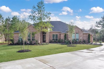 12927 Mossy Shore, Tomball, TX 77375 - #: 59456151