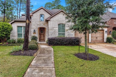 17411 Mount Riga Drive, Humble, TX 77346 - MLS#: 61063068