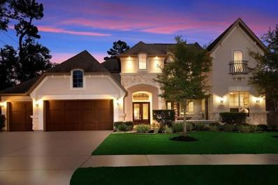 23122 Creek Park Drive, Spring, TX 77389 - #: 62112368