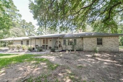 20225 S Hillcrest, Porter, TX 77365 - MLS#: 62507220