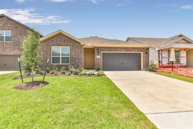 2503 Northern Great White Court, Katy, TX 77449 - MLS#: 63682674