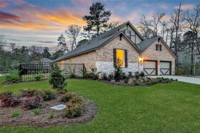145 Bluebell Woods Way, Willis, TX 77318 - #: 63936250