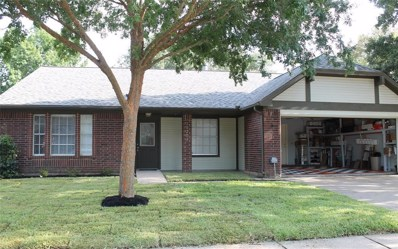 19203 Indian Grass Drive, Katy, TX 77449 - MLS#: 63981420