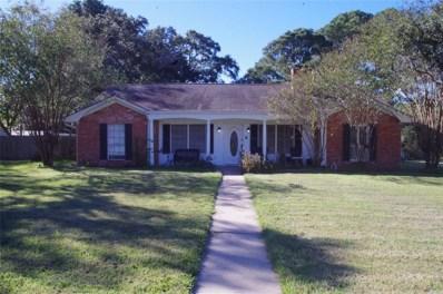 1605 9th Street, Hempstead, TX 77445 - MLS#: 64180445