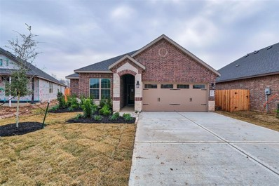 214 Verde Lake Way, Rosenberg, TX 77469 - #: 64562566