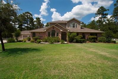 30418 S Holly Oaks, Magnolia, TX 77355 - MLS#: 64998215