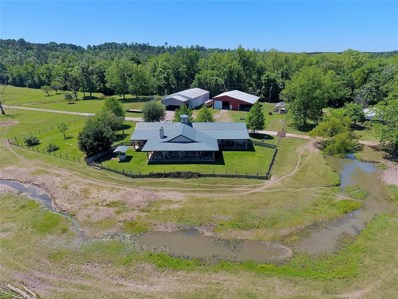 1100 State Highway 156, Point Blank, TX 77364 - MLS#: 65492405