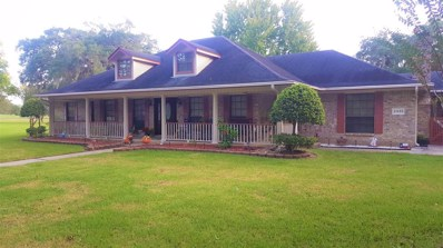 2335 Olympia Drive, West Columbia, TX 77486 - MLS#: 65521062