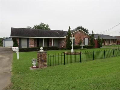 2216 Lomax School Road, La Porte, TX 77571 - #: 66224651