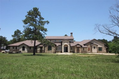 41 Willowcreek Ranch Road, Tomball, TX 77377 - #: 66278752