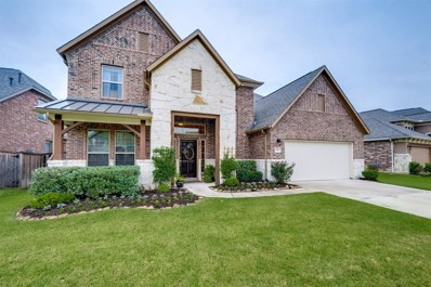 6131 Driscoll Park Drive, Richmond, TX 77407 - MLS#: 66653450