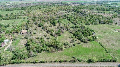 11485 Antioch Road, Midway, TX 75852 - MLS#: 66967182