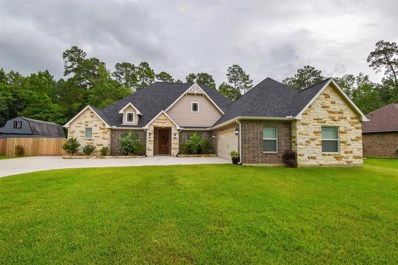 718 Parthenon Place Drive, New Caney, TX 77357 - MLS#: 66980351