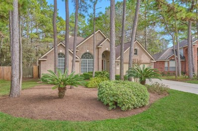 169 Linton Downs Place, The Woodlands, TX 77382 - MLS#: 67097322