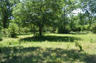 27851 Clarke Bottom Road, Hempstead, TX 77445 - MLS#: 68174802