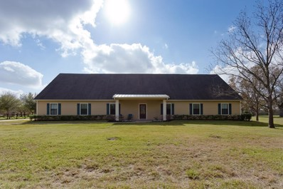 4632 Pecan Grove, Sugar Land, TX 77479 - MLS#: 68810669