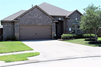 11707 Cielo, Richmond, TX 77406 - MLS#: 69116284