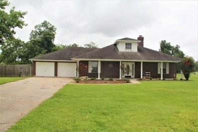814 Winchester, Angleton, TX 77515 - MLS#: 69346924