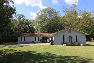 27 Chestnut Circle, Jasper, TX 75951 - #: 70119064