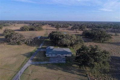 17901 Sh 35, West Columbia, TX 77486 - MLS#: 71342894