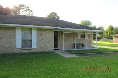 9414 Radio, Houston, TX 77075 - MLS#: 7168186