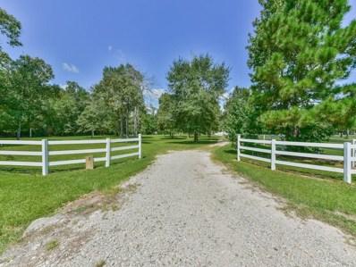 2 Ranch Creek, Magnolia, TX 77354 - MLS#: 71753042