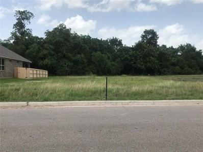 1805 E Basin Trail W, Brenham, TX 77833 - MLS#: 72336936