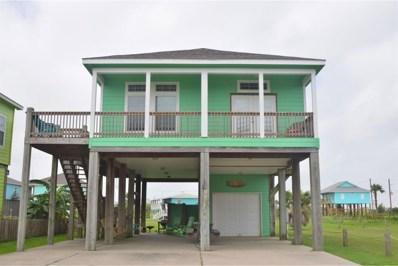 971 Driftwood Drive, Crystal Beach, TX 77650 - MLS#: 73009999