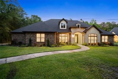 19325 Kanawha Drive, Porter, TX 77365 - #: 73012437