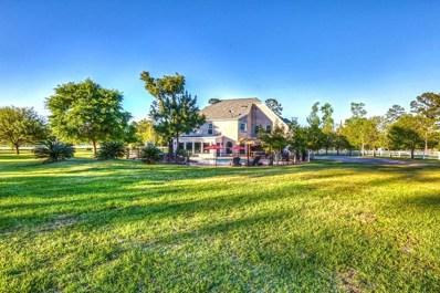29545 Dobbin Hufsmith, Magnolia, TX 77354 - MLS#: 73214295