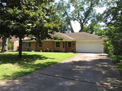 9909 Larston Street, Houston, TX 77055 - MLS#: 74091249