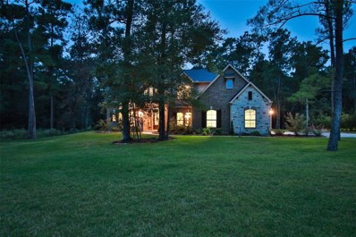 29023 Shirley Meadows, Magnolia, TX 77355 - MLS#: 74276623
