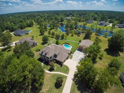 11919 Water Oak Drive, Magnolia, TX 77354 - #: 74913473