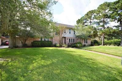 15702 Brookvilla Drive, Houston, TX 77059 - #: 75007997