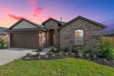 9119 Downing Street, Rosenberg, TX 77469 - #: 75294591