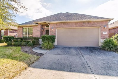 721 Rufina, League City, TX 77573 - MLS#: 76301874