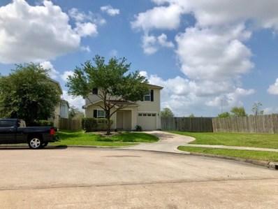 2602 Skyview Ridge Court, Houston, TX 77047 - MLS#: 78295415