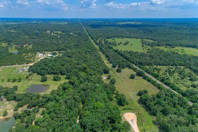 768 Meadow Bend Road, Bellville, TX 77418 - MLS#: 79350085