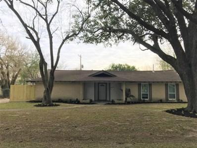 8915 Cadawac Road, Houston, TX 77074 - #: 79705220
