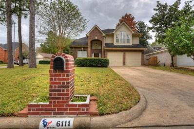 6111 Sparks Valley Ct Court, Houston, TX 77084 - MLS#: 79986121